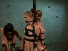 Raging Bobbi Starr tortures those slutty tarts